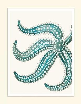 Blue Underwater Scenes 2 d Digital Print by Fab Funky,Decorative