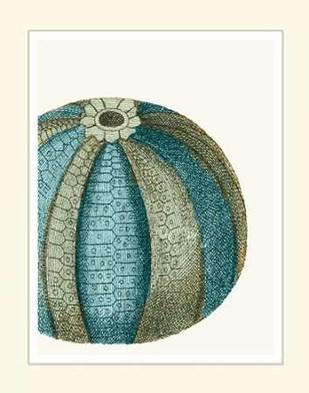 Blue Underwater Scenes 1 a Digital Print by Fab Funky,Decorative