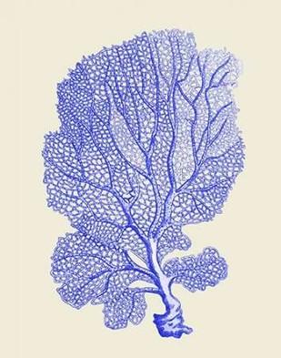 Blue Corals b Digital Print by Fab Funky,Decorative