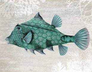 Turquoise Turret Fish Print By Fab Funky
