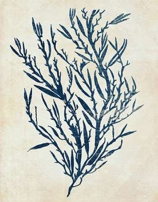 Indigo Blue Seaweed 3 b Digital Print by Fab Funky,Illustration