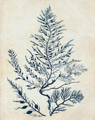 Indigo Blue Seaweed 3 d Digital Print by Fab Funky,Illustration