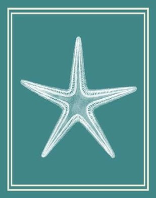 Mixed Nautical White on Teal a Digital Print by Fab Funky,Decorative