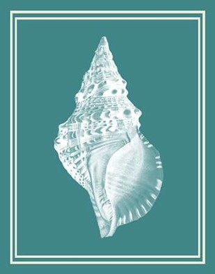 Mixed Nautical White on Teal c Digital Print by Fab Funky,Decorative