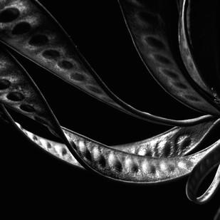15 Kavadsa by Shailan Parker, Image Photography, Digital Print on Archival Paper, Black color