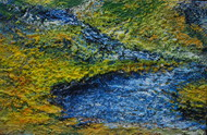 Untitled by Ghazali Moinuddin, Impressionism Painting, Acrylic on Canvas, Green color