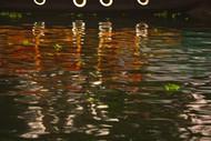 Waterline 9 by Saba Hasan, Image Painting, Digital Print on Archival Paper, Brown color