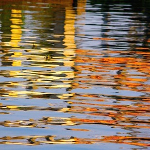 waterline11 by Saba Hasan, Image Photography, Digital Print on Archival Paper, Brown color