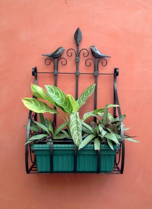 Two for Joy - Bird planter Garden Decor By Studio Earthbox