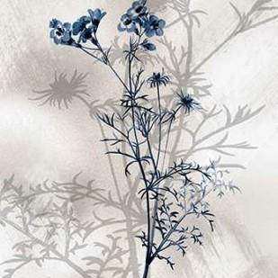 Indigo Bloom I Digital Print by Butler, John,Decorative