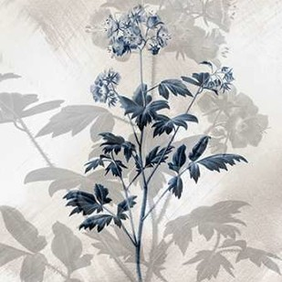 Indigo Bloom II Digital Print by Butler, John,Decorative