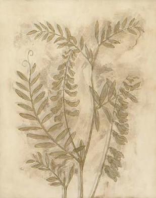 Gilded Foliage I Digital Print by Meagher, Megan,Decorative