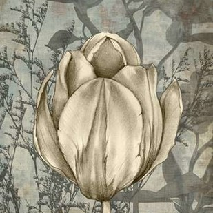 Tulip & Wildflowers I Digital Print by Goldberger, Jennifer,Decorative
