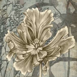 Tulip & Wildflowers II Digital Print by Goldberger, Jennifer,Decorative