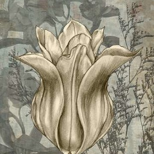 Tulip & Wildflowers III Digital Print by Goldberger, Jennifer,Decorative