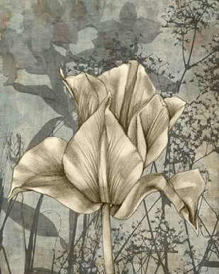 Tulip & Wildflowers IV Digital Print by Goldberger, Jennifer,Decorative