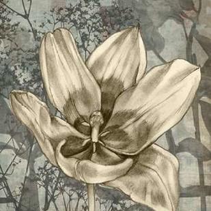 Tulip & Wildflowers VIII Digital Print by Goldberger, Jennifer,Illustration
