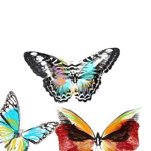 Butterflies Dance II Digital Print by Project, A.,Decorative