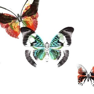 Butterflies Dance III Digital Print by Project, A.,Decorative