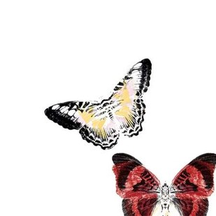 Butterflies Dance V Digital Print by Project, A.,Decorative