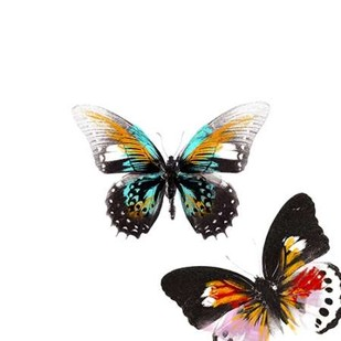 Butterflies Dance VI Digital Print by Project, A.,Decorative