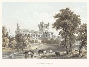 Jedburgh Abbey Digital Print by Unknown,Illustration