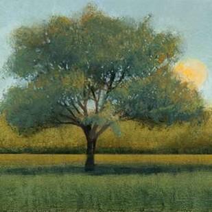 Sunrise I Digital Print by OToole, Tim,Impressionism