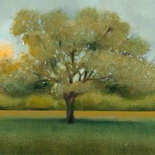 Sunrise II Digital Print by OToole, Tim,Impressionism