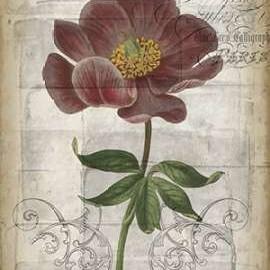 French Floral I Digital Print by Goldberger, Jennifer,Decorative