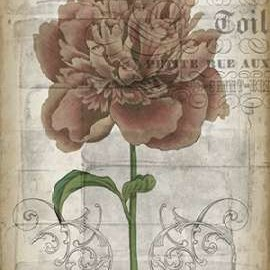 French Floral IV Digital Print by Goldberger, Jennifer,Decorative