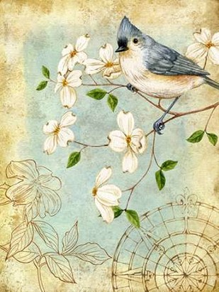 Songbird Sketchbook IV Digital Print by Maday, Jane,Decorative