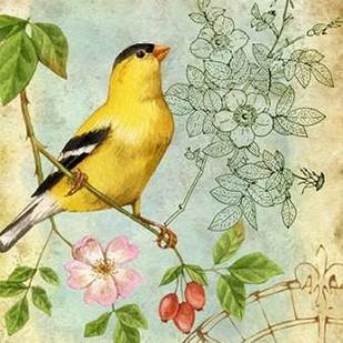 Songbird Sketchbook III Digital Print by Maday, Jane,Decorative