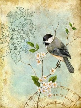 Songbird Sketchbook II Digital Print by Maday, Jane,Decorative
