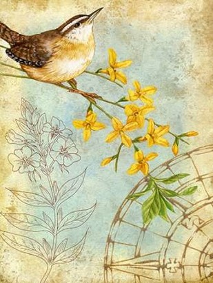 Songbird Sketchbook I Digital Print by Maday, Jane,Decorative