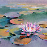 Waterlilies   15