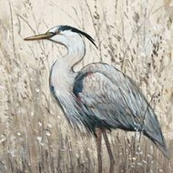 Hunt in Shallow Waters II Print By Otoole, Tim