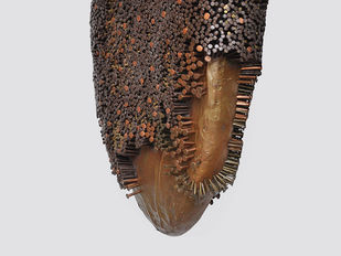 Honey comb by Janarthanan R, Conceptual Sculpture | 3D, Mixed Media on Wood, Gray color