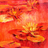 Waterlilies   51