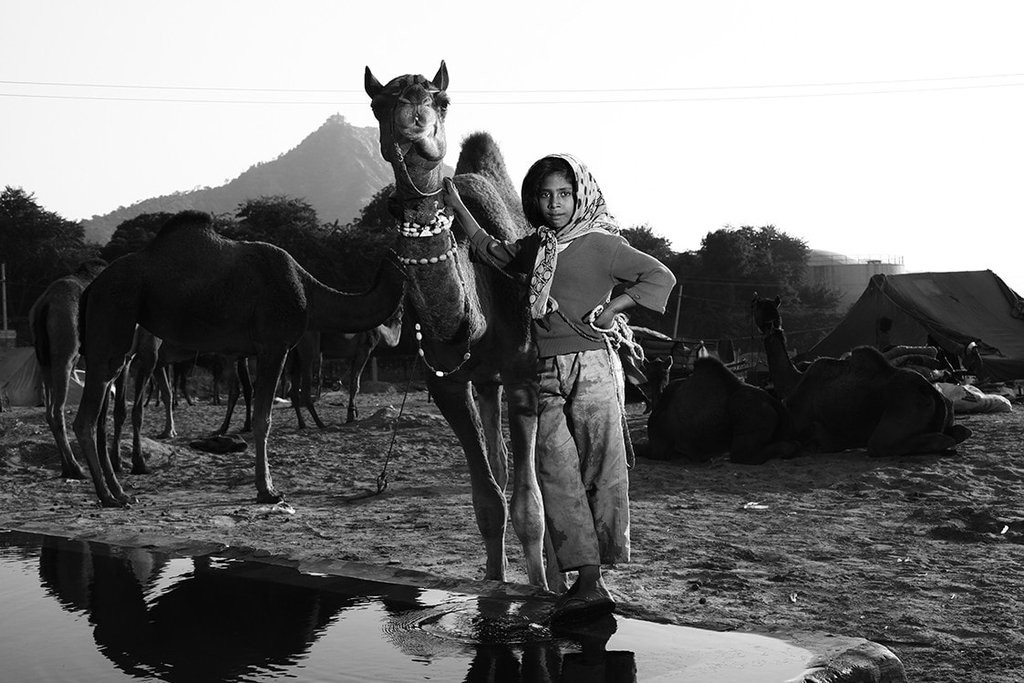 Camel Girl by Haran Kumar, Image Photography, Digital Print on Archival Paper, Gray color