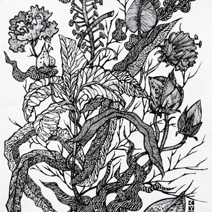 FLORA AND FAUNA by rajshree ramesh, Illustration Drawing, Ink on Paper, Black color