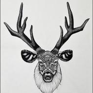 Kushal kumar ns deer 16x20 isograph pen on acid free paper 2015 16000