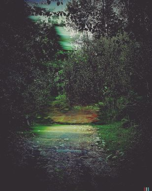 Path To The Enchanted Forest by Tanya Palta, Image Digital Art, Digital Print on Paper, Gray color