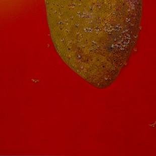 Bee Hive by Richa Navani , Conceptual Painting, Acrylic on Canvas,