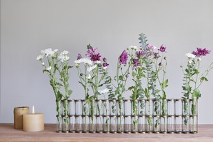 Test Tube Vase 20 Holder Decorative Vase By The Lohasmith
