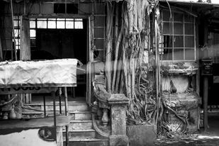 Decay by Anamitra Chakladar, Image, Image Photography, Digital Print on Canvas, Gray color