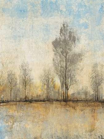 Quiet Nature I Digital Print by Otoole, Tim,Impressionism