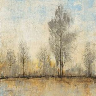 Quiet Nature I Digital Print by Otoole, Tim,Impressionism