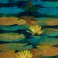 Waterlilies   85