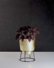 Planter - low Garden Decor By Atelier DS