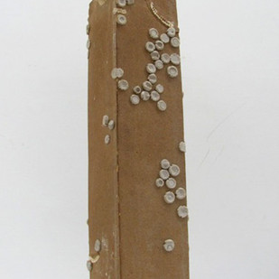 SCABROUS ALLURE V by SHITANSHU G. MAURYA, Art Deco Sculpture   3D, Ceramic, Gray color